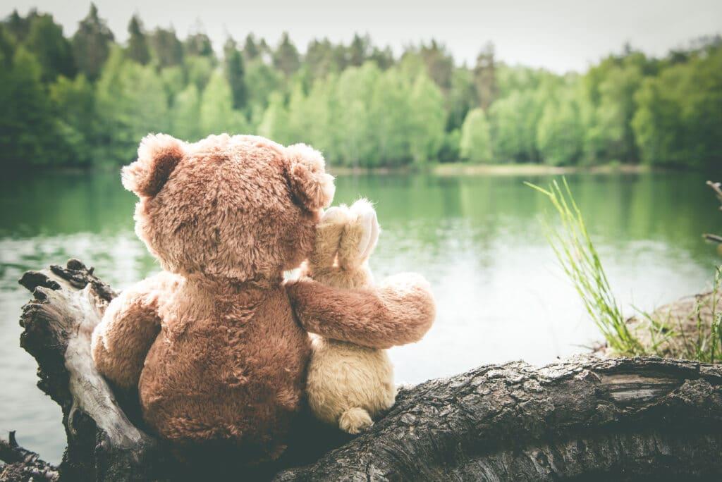 Ein Bär und ein Hase blicken auf den See und freuen sich auf die Gute-Nacht-Geschichten am Abend.
