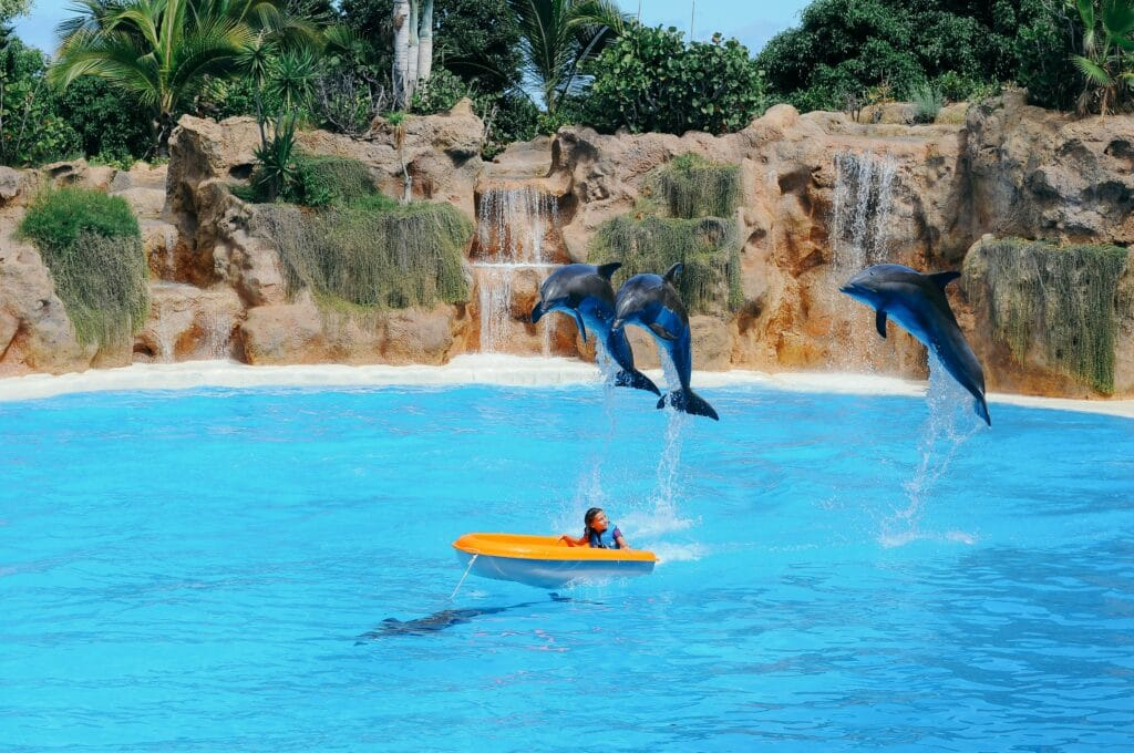 An einem heißen Sommertag gibt es für Kinder keine schönere Abkühlung als im Wasser in einem Schwimmbad